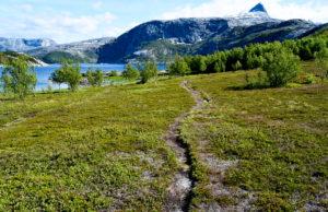 Åselibrua Elvefjorden