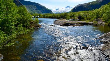 Børvatnet i Bodø om sommeren