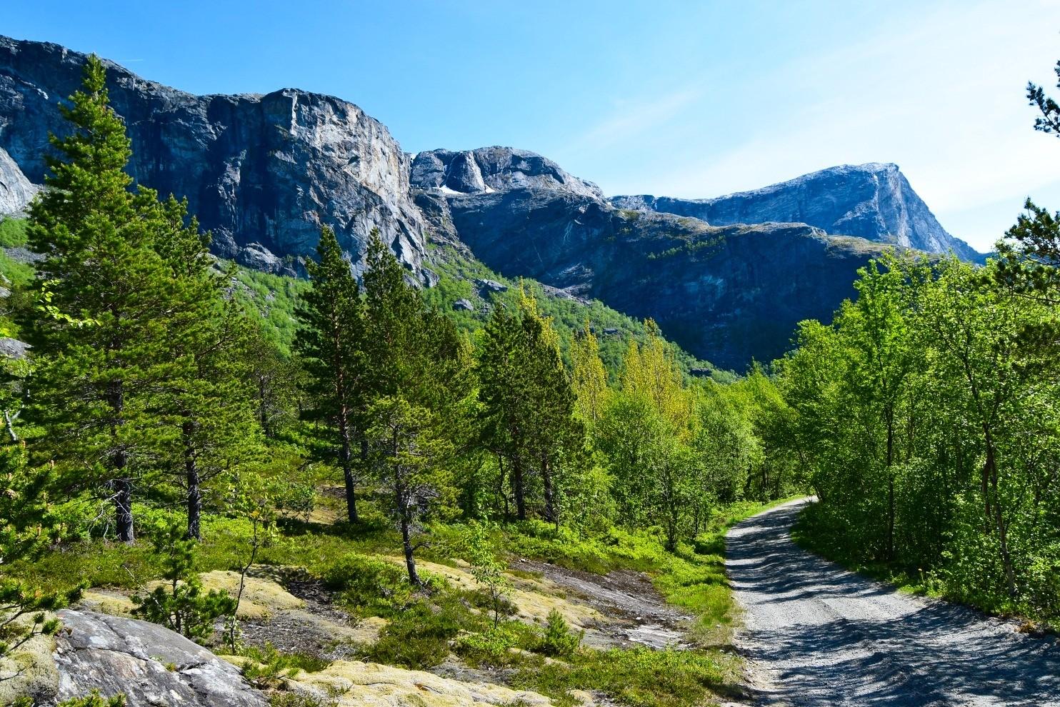 Veien Til Børvatnet I Bodø