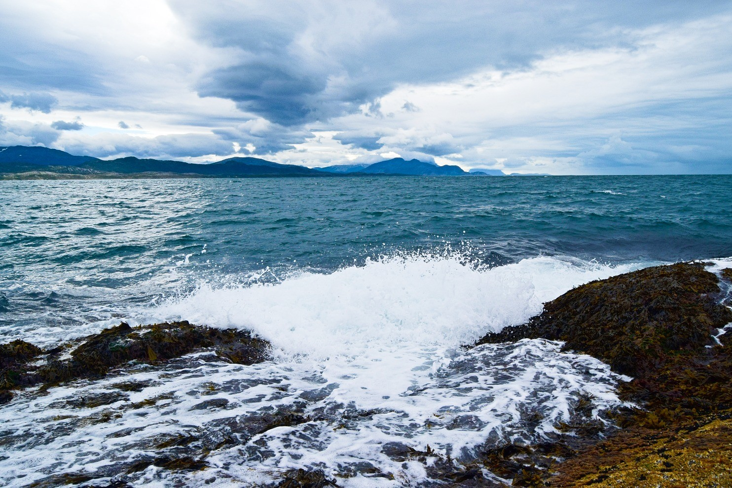 Bølger og brus i fjæra
