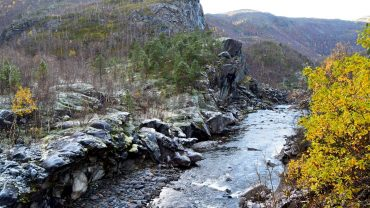 Frost ved ei elv i høstskogen