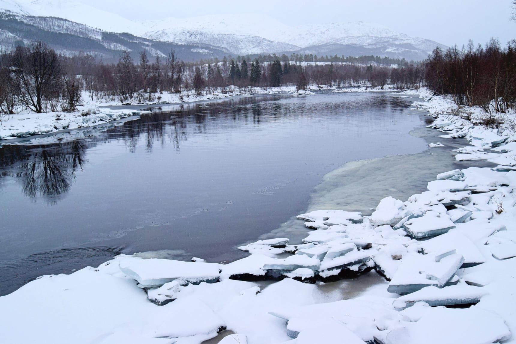 Lakselva i Valnesfjord en vinterdag