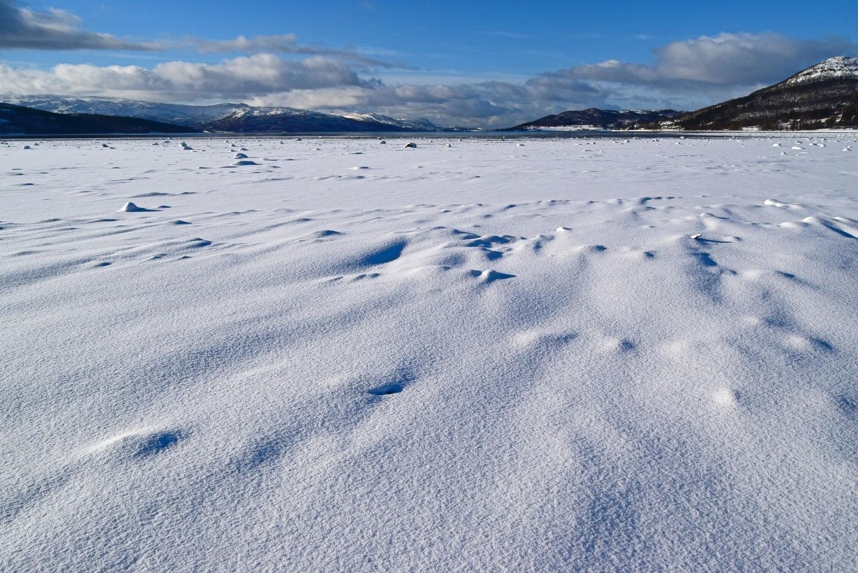 Vinter i fjæra på Fauske