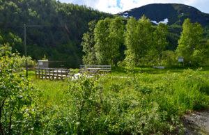 Sykkeltur til Øvre Valnesfjord