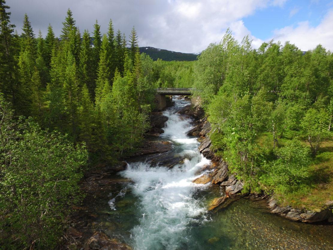 Foss Øvre Valnesfjord