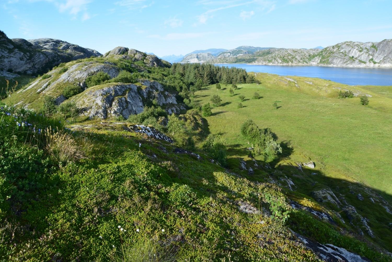 Store Hjertøya utenfor Bodø