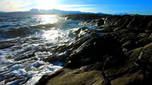 Bølger i fjæra på en vinterdag