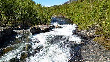 Børelva i Bodø en solskinnsdag