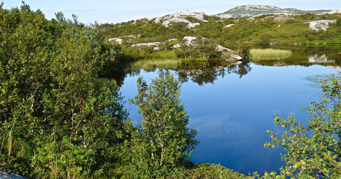 Pallvatnet i Bodø