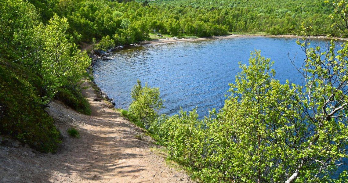 Skogstur rundt Vågøyvatnet