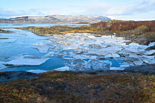 Fjæretur i Bodø en dag i Februar