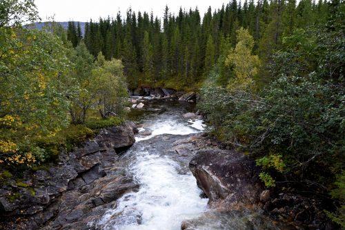 Høstnatur fra Nord Norge