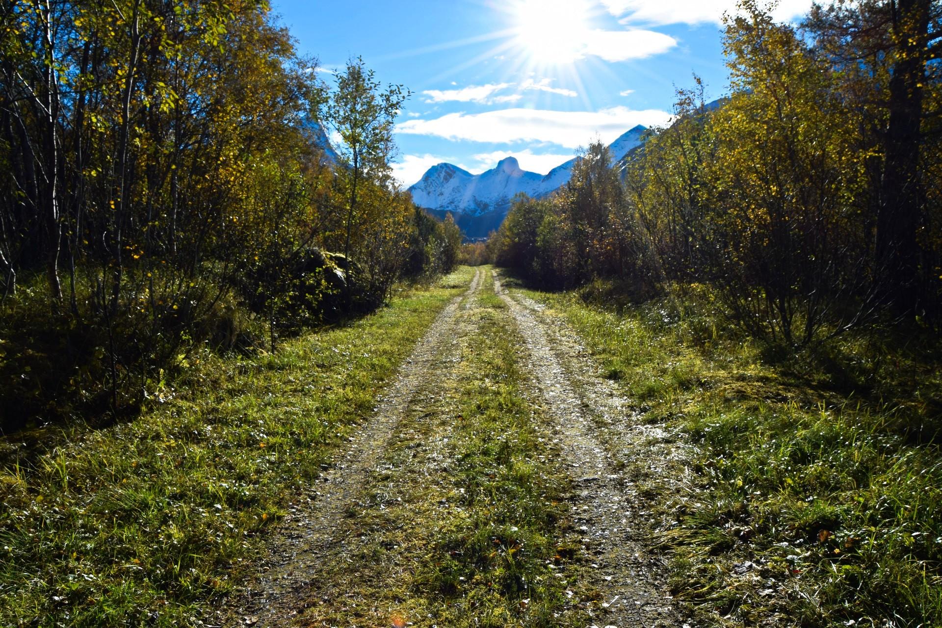 Høstnatur I Nord Norge