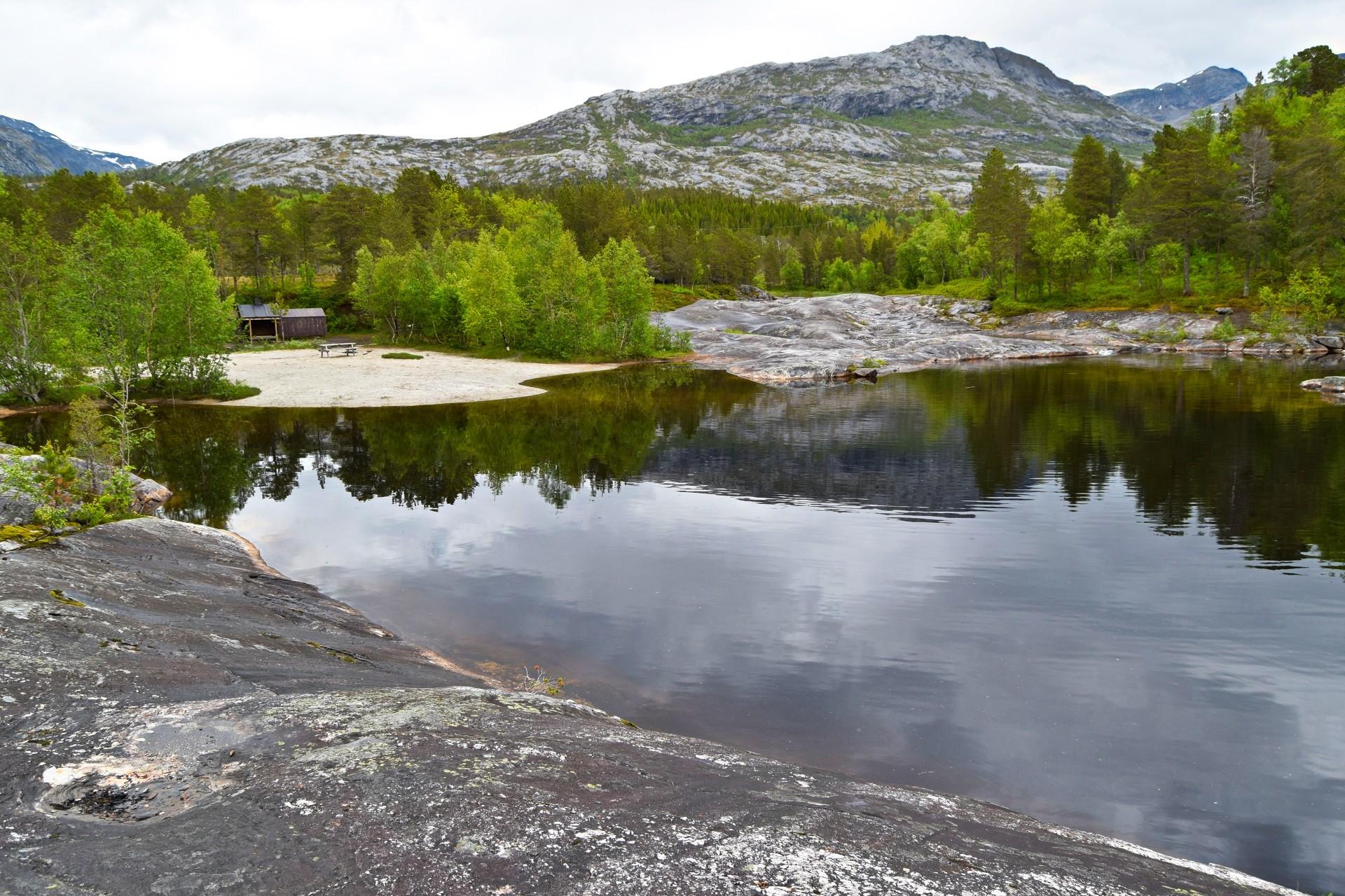 Heggmokulpen Bodø
