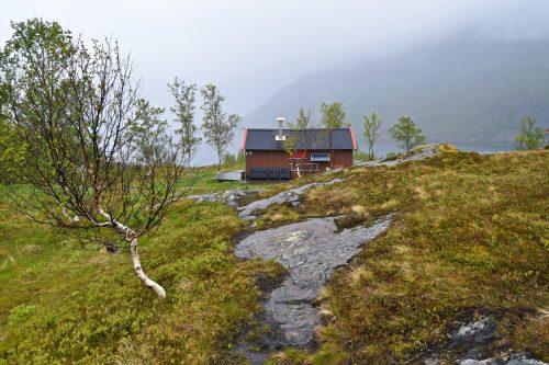 Skogstur til Sørfjorden i Sjunkhatten