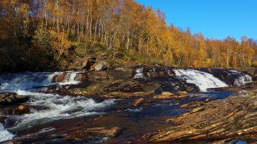 Lyden av ei elv i høstskogen