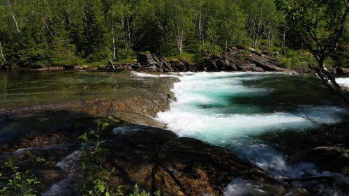 Lyden av ei elv i skogen