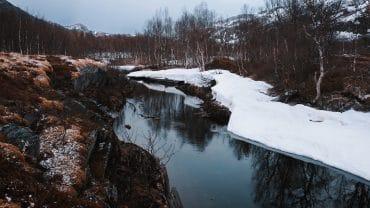 Lyden av ei elv og fuglekvitter