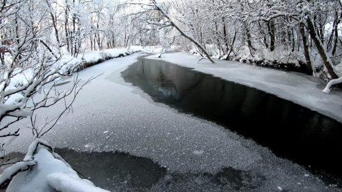 Elv som renner nedover vinterskogen