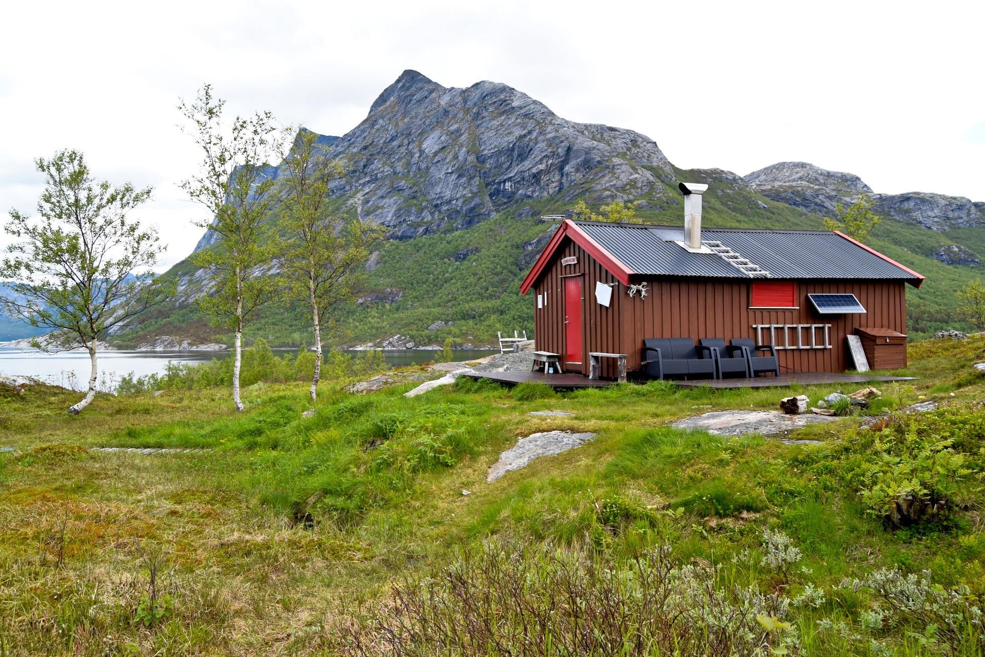 Skogstur Til Sørfjorden