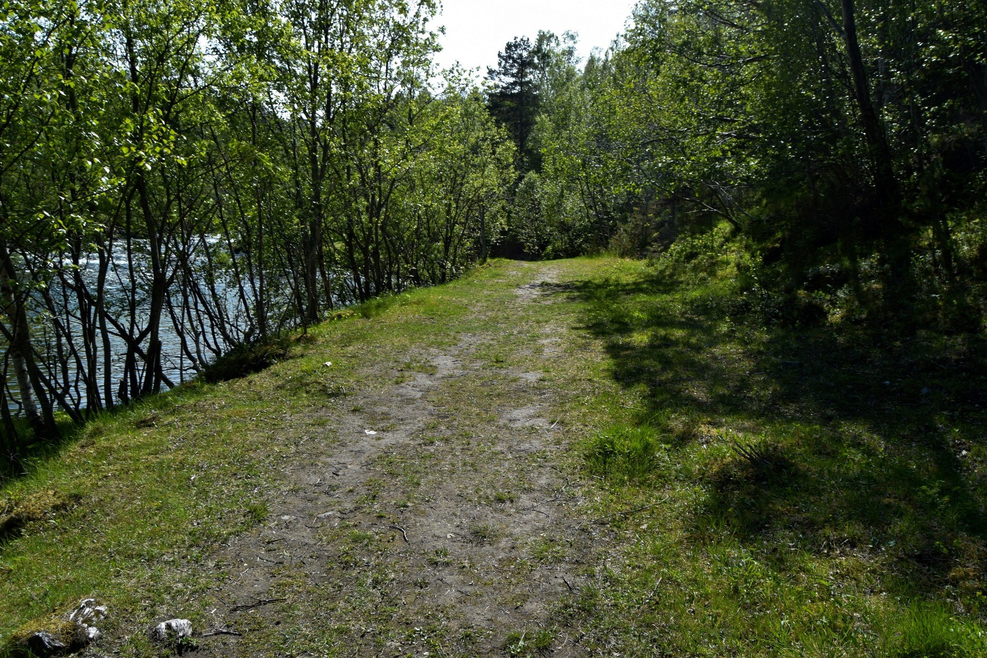Skogstur til Valnesfossen