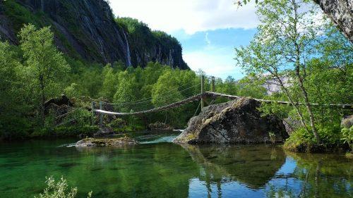 Sommerskog med naturlyder