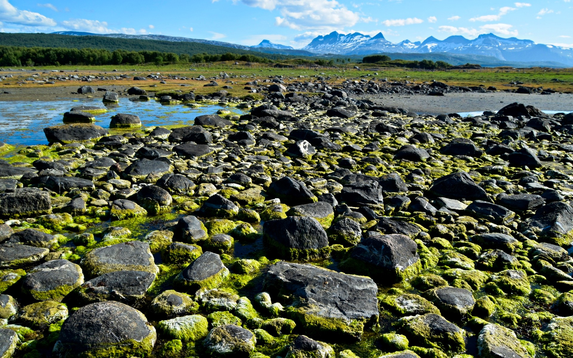Tverlandet natur reservat i Bodø