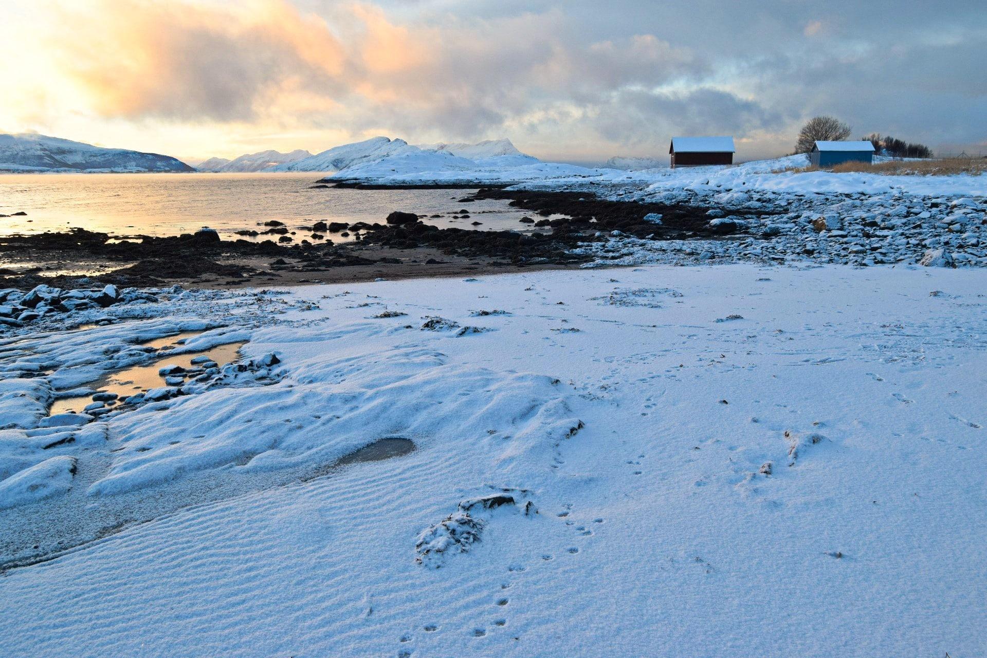 Kald vinterdag i fjæra ved Bodøsjøen